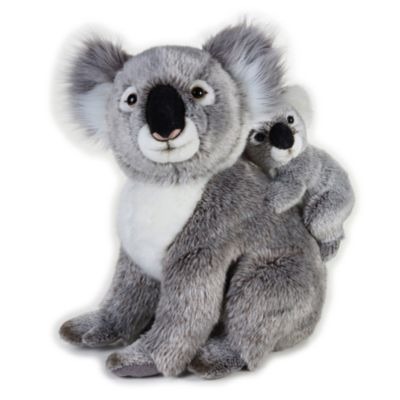 Disney Store Peluche moyenne koala et Joey National Geographic