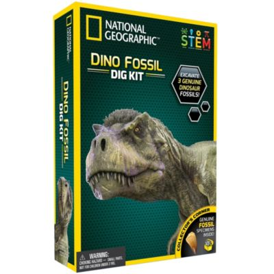 Bandai - National Geographic - Ausgrabungsset - Dinosaurierfossilien zum Ausgraben