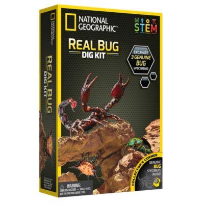 Bandai National Geographic Bug Dig Kit