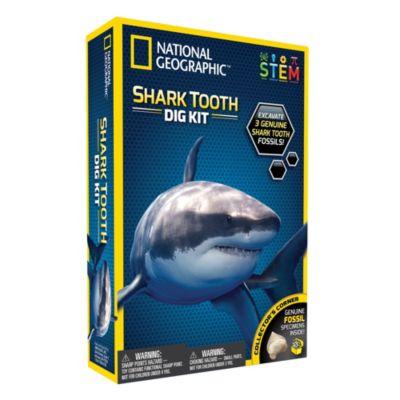 Bandai - National Geographic - Ausgrabungsset - Haifischzähne zum Ausgraben